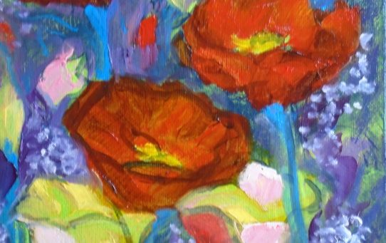 giftsbynaomi red poppies remembrance